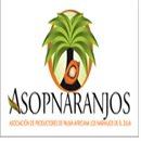 Asociación de Productores de Palma Africana Los Naranjos