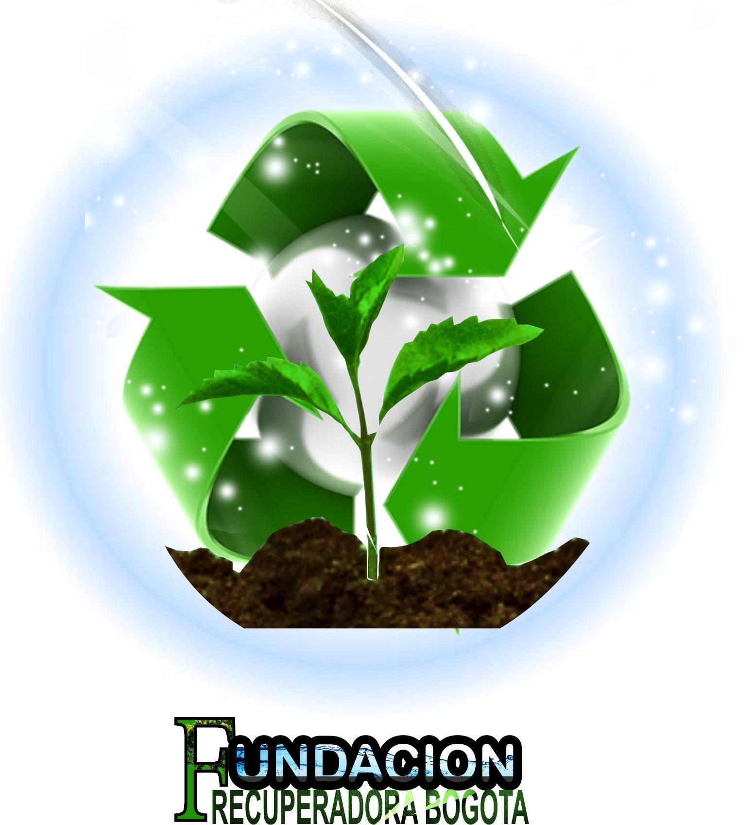Fundacion Recuperadora Bogota