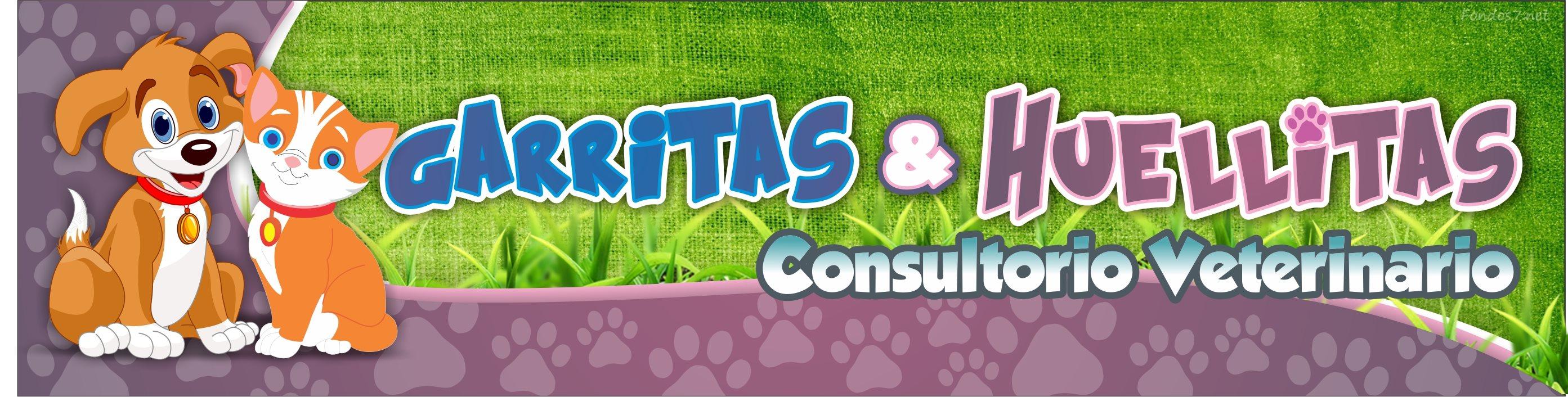 Consultorio Veterinario Garritas y Huellitas