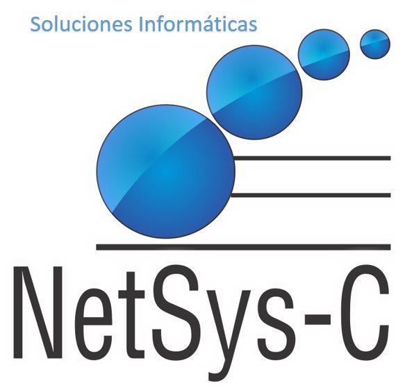 NetSys-C S.A.S