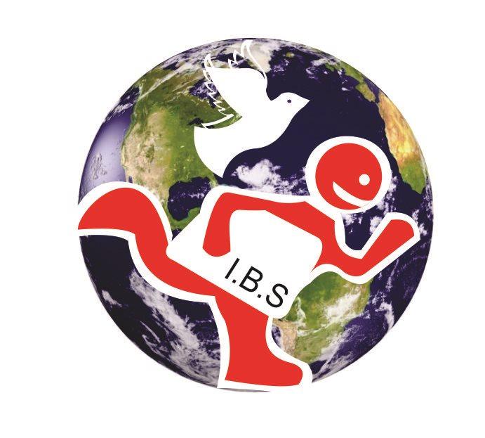 Distribuciones y Servicios IBS