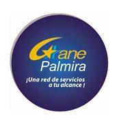 Gane Palmira