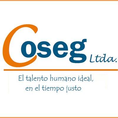 Compañía de Servicios Generales - COSEG LTDA.