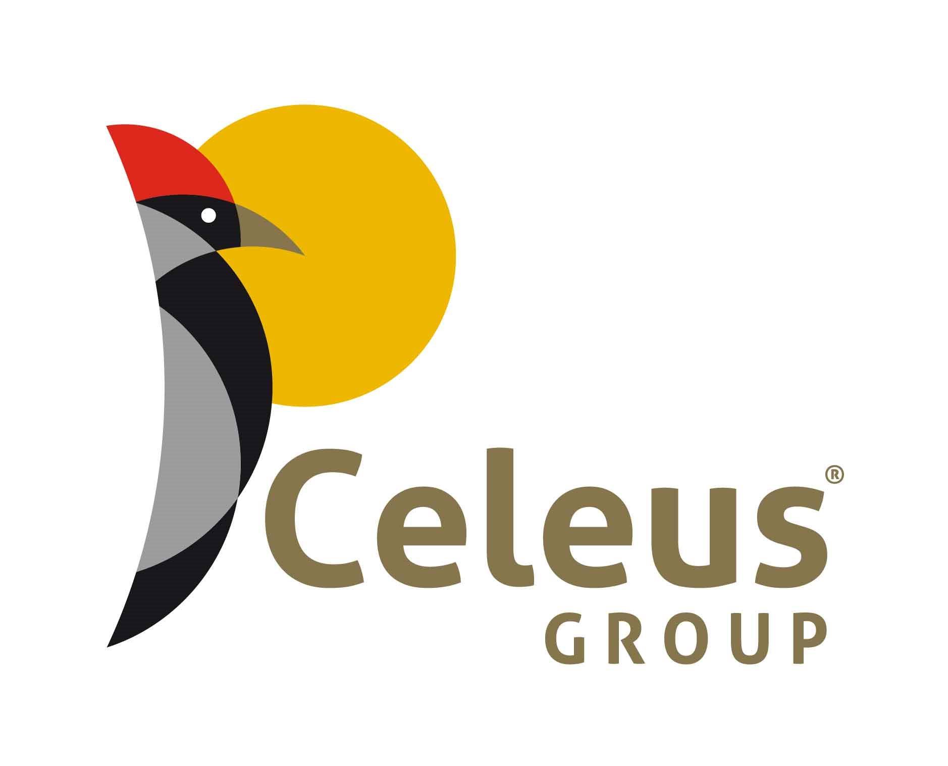 Constructora Celeus Group