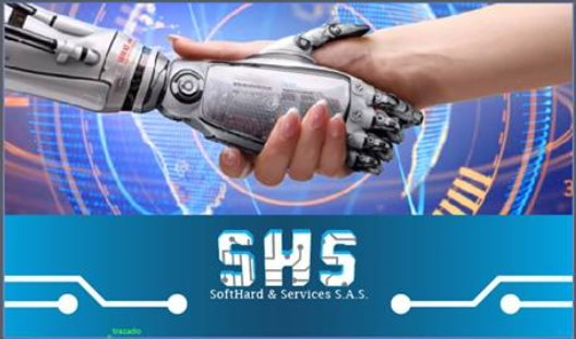 SHS SOFTHARD SERVICES SAS