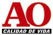 ELECTRO AO S.A.S.