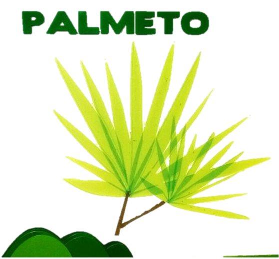 CONJUNTO RESIDENCIAL PALMETO - PROPIEDAD HORIZONTAL