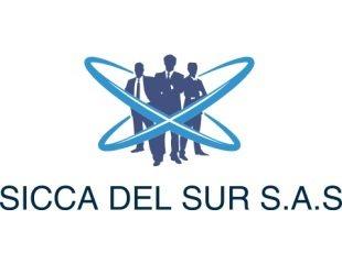 SERVICIOS DE INGENIERÍA, CONSTRUCCIÓN, CONSULTORIA Y ASESORÍA DEL SUR