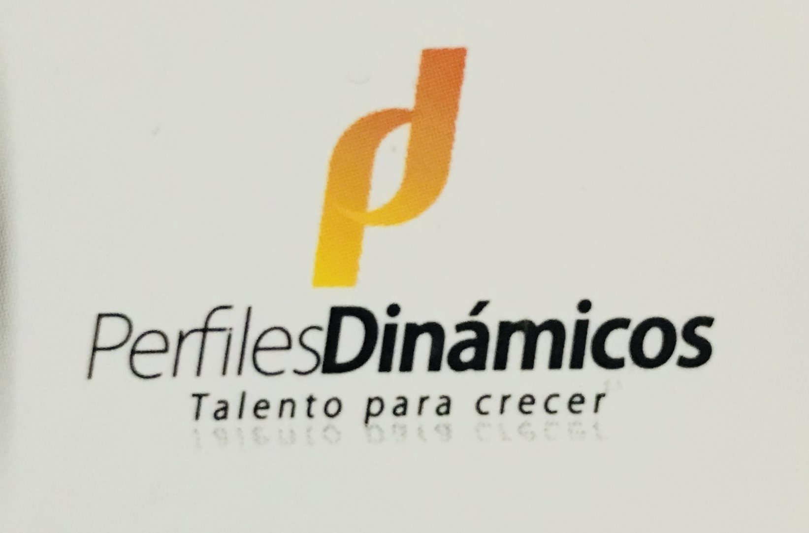 PERFILES DINAMICOS E.S.T S.A.S