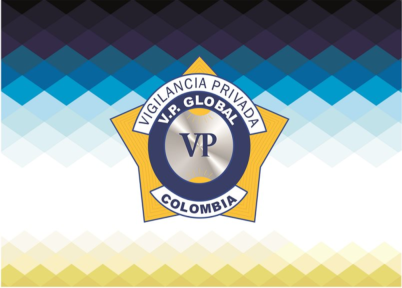 V. P. GLOBAL LTDA