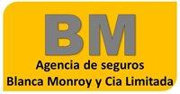 AGENCIA DE SEGUROS BLANCA MONROY Y CIA LIMITADA