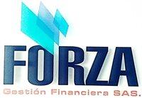 FORZA GESTION FINANCIERA SAS