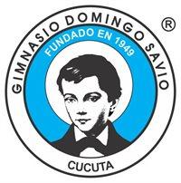 GIMNASIO DOMINGO SAVIO