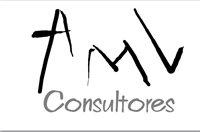 AMV CONSULTORES SAS