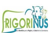 FRIGORINUS