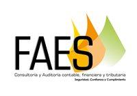 FAES ASESORES Y CONSULTORES SAS