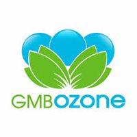 GMBOZONE