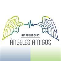 AMBULANCIAS ANGELES AMIGOS LTDA