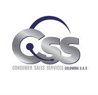 Consumer Sales Services