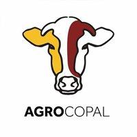AGROPECUARIA COPAL SAS