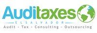 AudiTax