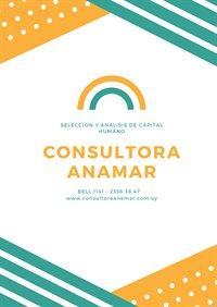 Consultora Anamar