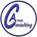 Arango Consulting