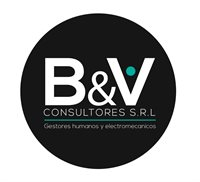 byv consultores