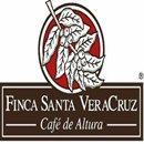 Coffe Corporate Service SA de CV