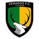 Club de Futbol Mérida