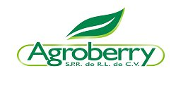 Agroberry SA de CV