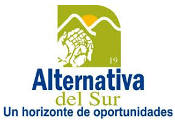 Alternativa 19 del Sur SA de CV