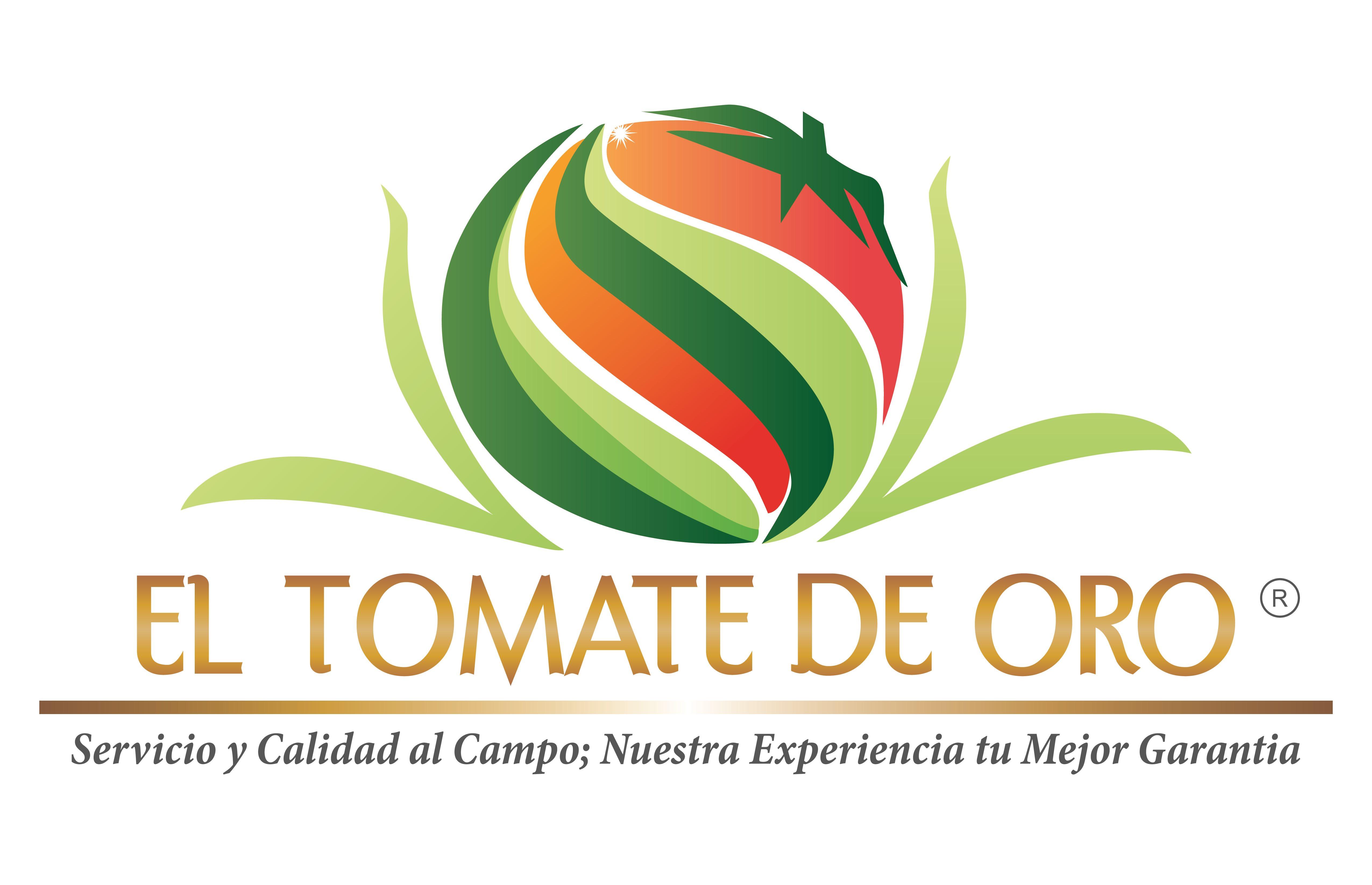 EL TOMATE DE ORO