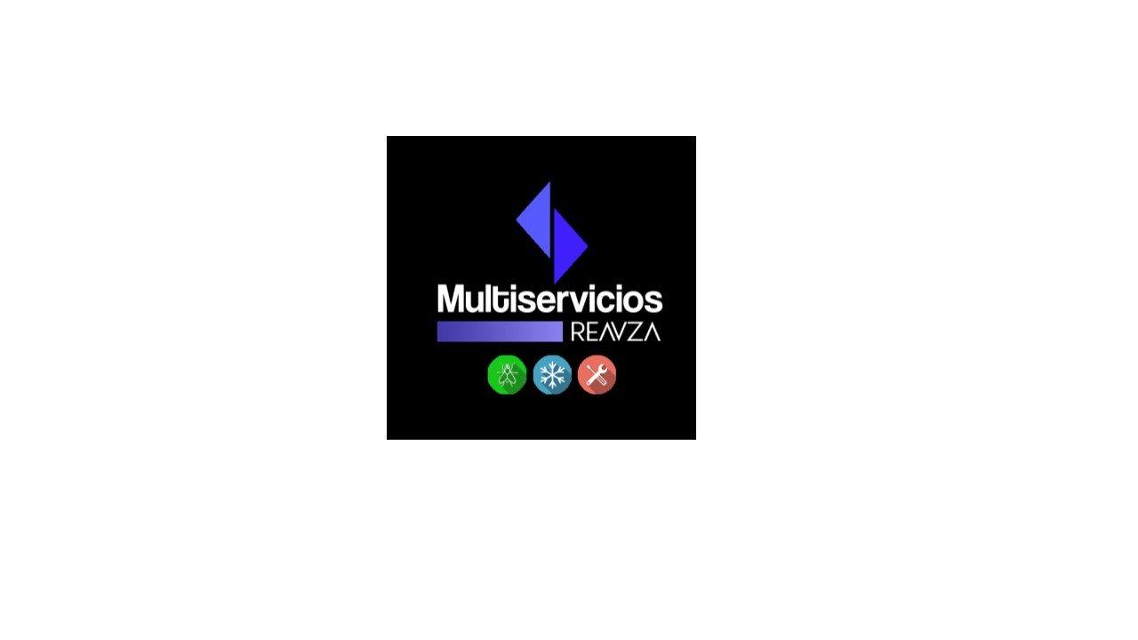 Multiservicios Reavza