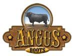 Angus Boots