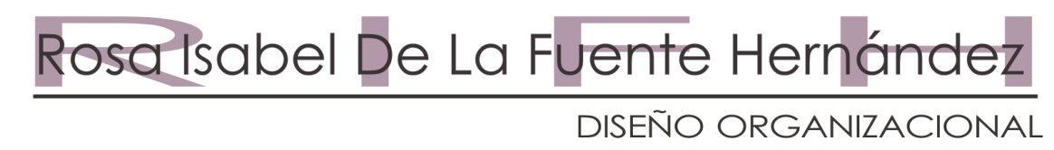 Diseño Organizacional - Rosa Isabel De La Fuente Hernández