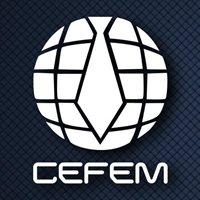 CENTRO DE FORMACIÓN EMPRESARIAL (CEFEM)