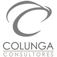 Colunga Consultores