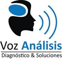Voz Análisis SA de CV