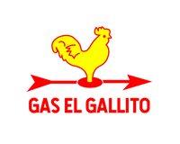 GAS DE LA SELVA S.A. DE C.V.