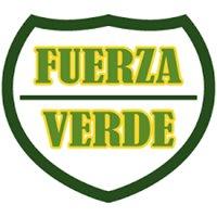 FUERZA VERDE SERVICIOS DE SEGURIDAD PRIVADA S.A. DE C.V.