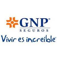 Asesores Financieros GNP grupo Jezreel
