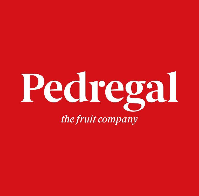 El Pedregal
