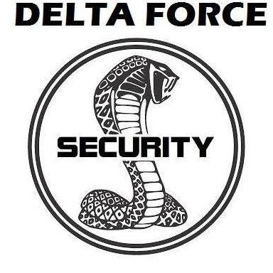 DF SECURITY e.i.r.l.