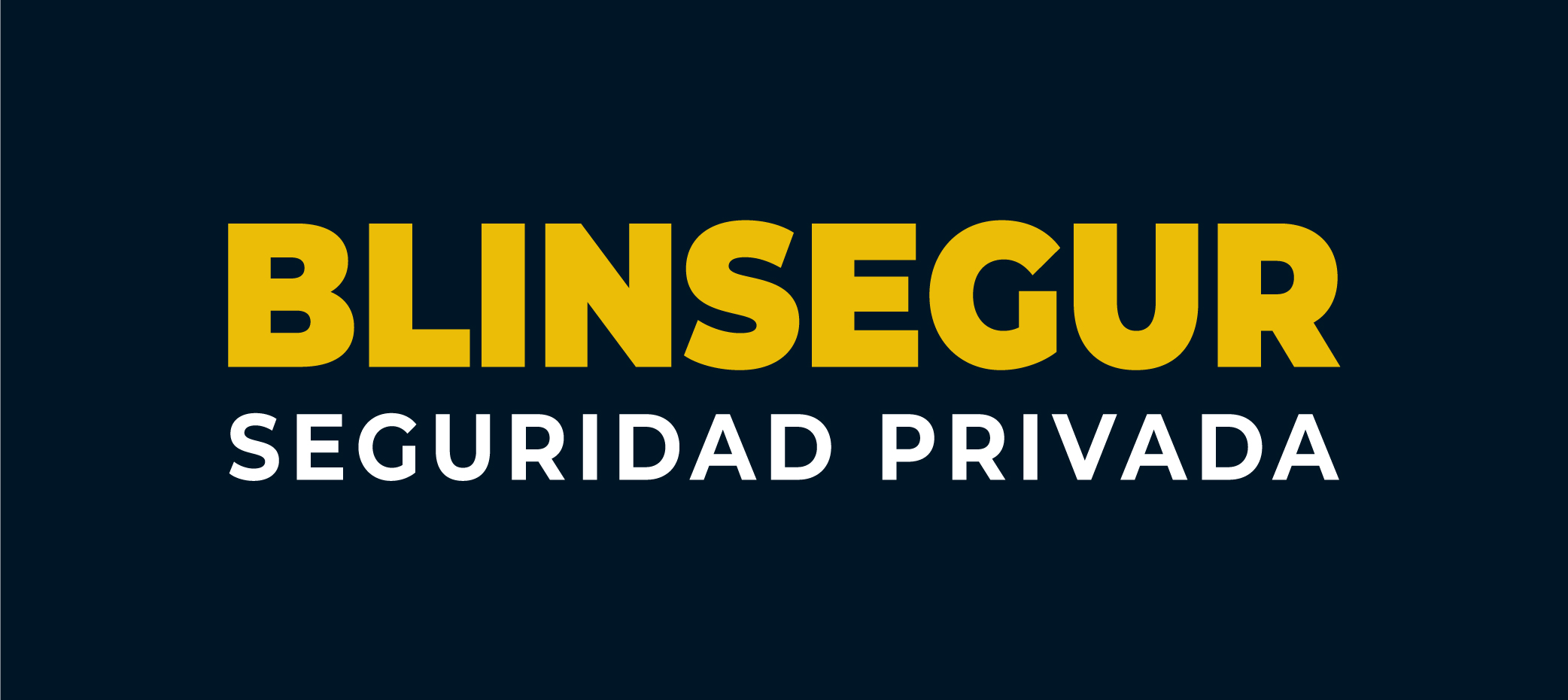 BLINSEGUR S.R.L.