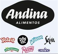 P&D ANDINA ALIMENTOS S.A.