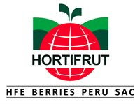 HFE BERRIES PERU SAC
