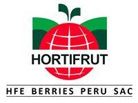 HFE BERRIES PERU SAC