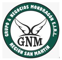 GRUPO Y NEGOCIOS MONDRAGON EIRL