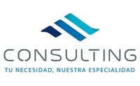 CONSULTING PERU INC S.A.C